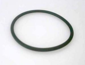 O-Ring Tankbefestigung G008